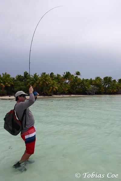 Tahiti (Anaa) (22).JPG