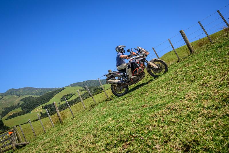 2018 KTM New Zealand Adventure Rallye - Northland (685).jpg