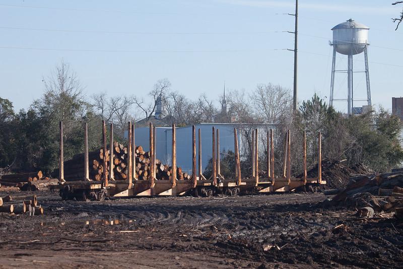 Wood yard in Thomasville, Ga.