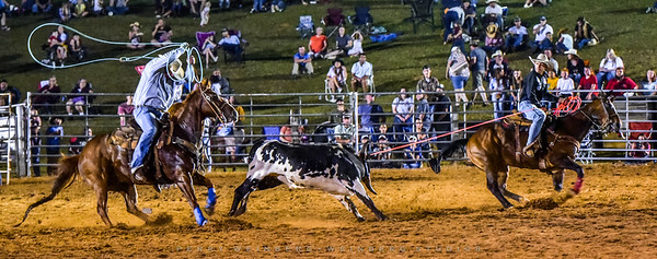 River Oaks 30th Anniversary Rodeo