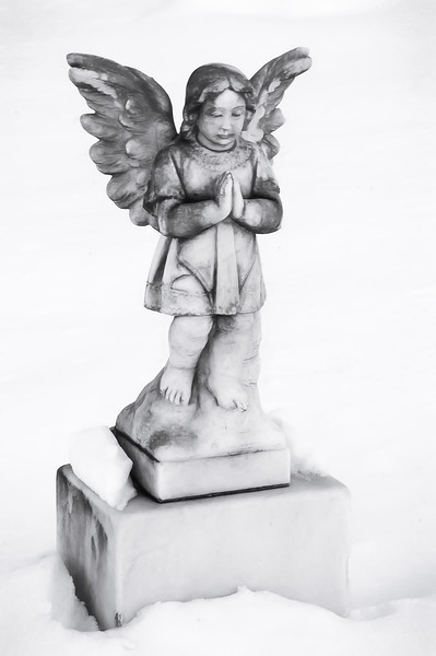 angel  021416.jpg