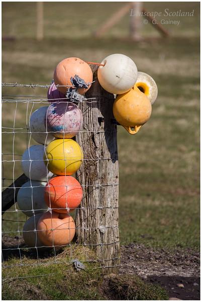 Fence post buoys, Kilmoluaig