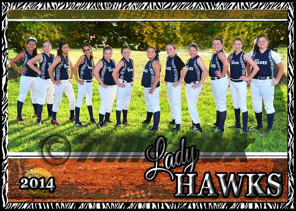 Lady Hawks 2014