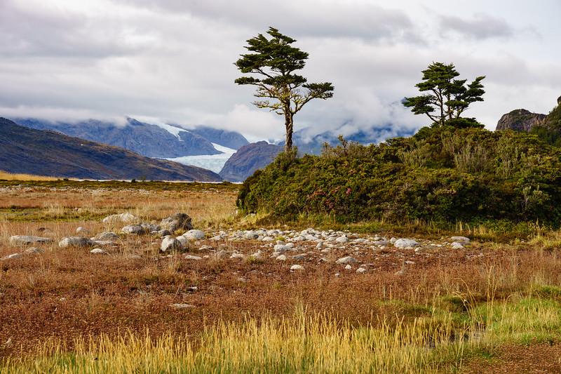Patagonia 2018-02350.jpg