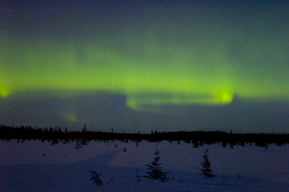 Description of . In this Feb. 14, 2012, file photo, the northern lights or aurora borealis shimmer in the sky above Kenai, Alaska, shortly before daybreak. This year and next year are expected to offer prime viewing for the northern lights due to a peak in the cycle of solar activity that causes the lights. The Fairbanks region of Alaska is gearing up for increased tourism as visitors flock to see the colorful but elusive phenomenon.  (AP Photo/Peninsula Clarion, M. Scott Moon)