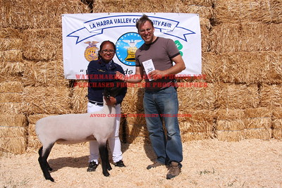 2011 LHVCF Auction