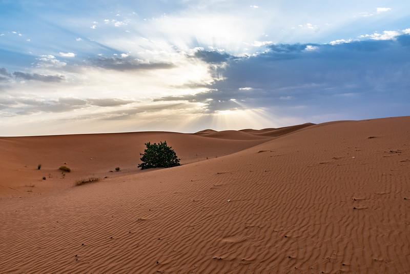 Marruecos-_MM11269.jpg