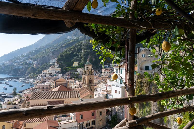 Lemon farm in Amalfi