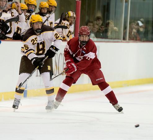 11/19/14: Boys' Varsity Hockey v Brunswick