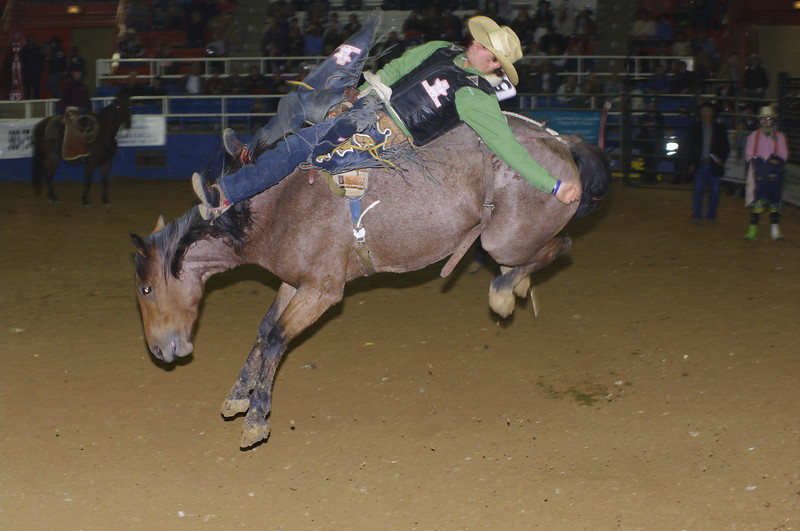 Rodeo/Barrel Racing