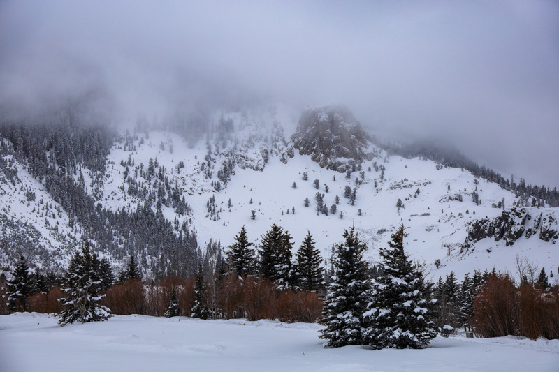 December 26 - Mammoth Rock enshrouded by an early morning snowstorm, Mammoth Lake, California-.jpg