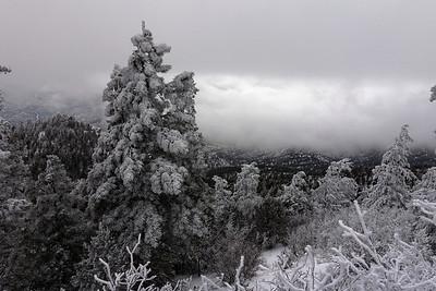 Embudito Trail 2013-11-24