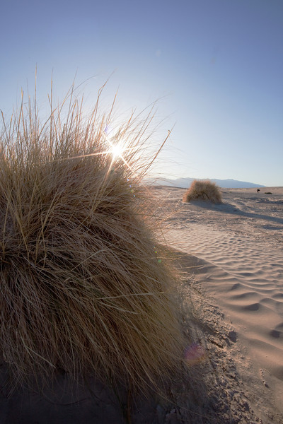 sun-star-sand-dunes-death-valley-np.jpg