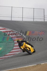 Yellow Duc
