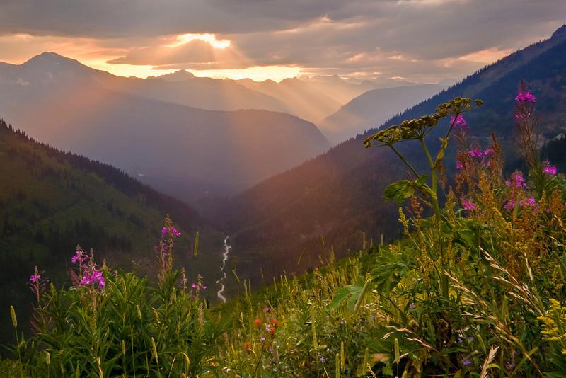 Evening in the Valley - Varina Patel