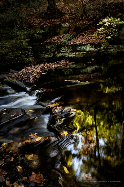Pequonnock River Valley Park, Trumbull, CT
