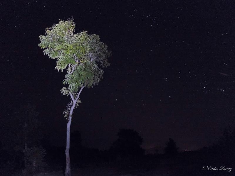 Haiti - Night Sky.jpg