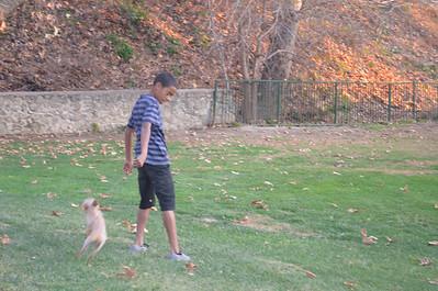 Walk with the Boys & Honey (Jan. 7, 2012)