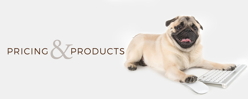 pricing and products banner 2.jpg
