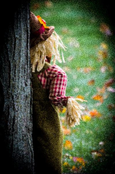 20151020 Fall Scarecrow-4412.jpg
