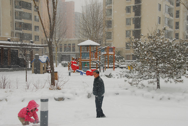 [20100103] 1st 2010 Snow in Beijing (64).JPG