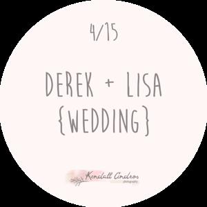 Derek + Lisa