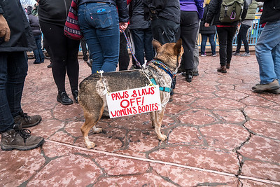 Women's March on Albuquerque • 1.21.17