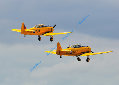 AT-6 Harvards