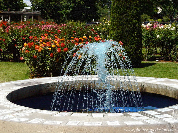 Municipal Rose Garden - Boise: 2005-2011