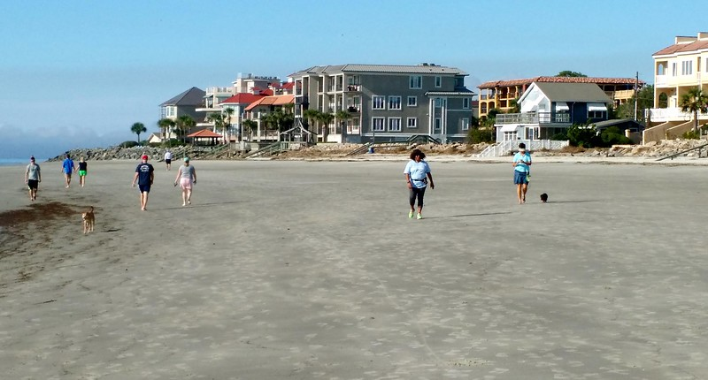 Tourists and dogs walking a wide flat beach bordered by homes at St. Simons Island.