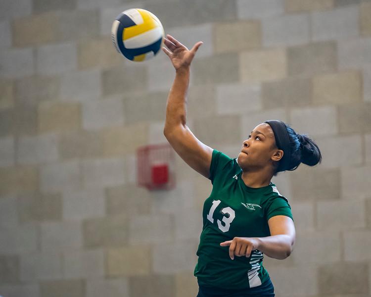 2018-Stvenson_Lady's_Volleyball-24.jpg