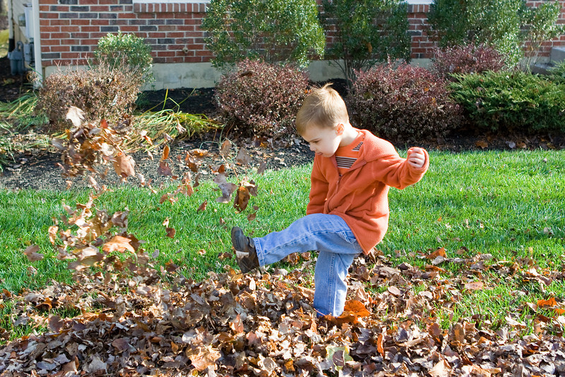 K.C. takes some time for fun in kicking the leaves.