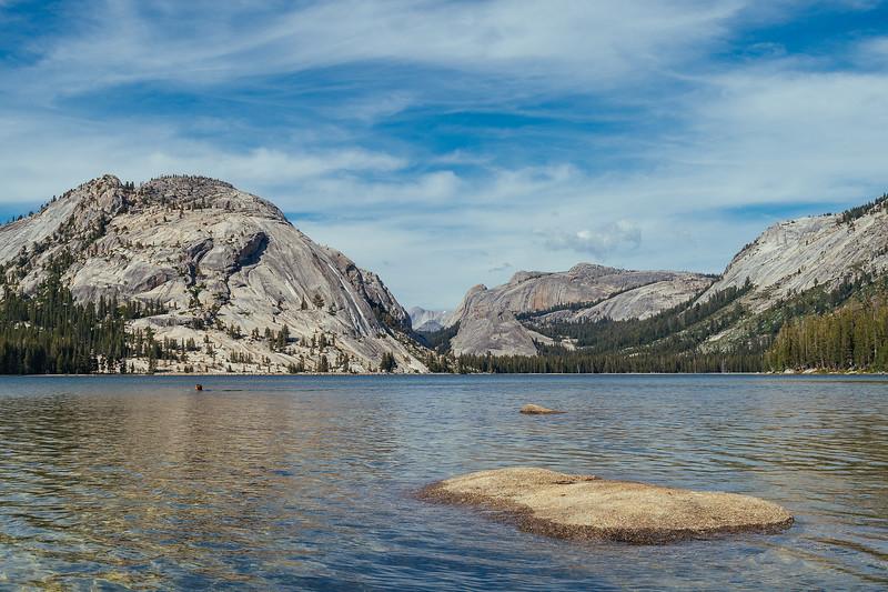 Swimmer, Tenaya Lake, Yosemite National Park