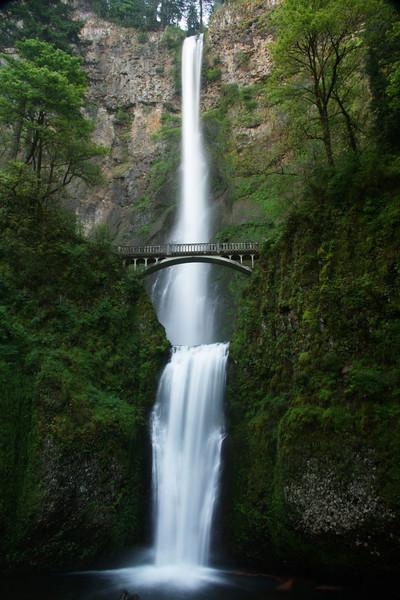 Oregon Spring