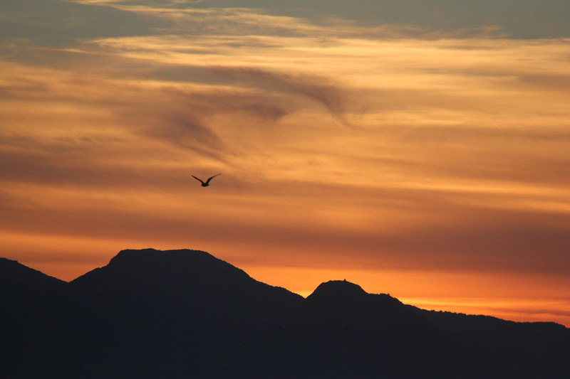 20160717-191 - WEX-Sunset.JPG