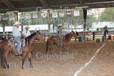 2017 Ranch Rodeo Doctoring