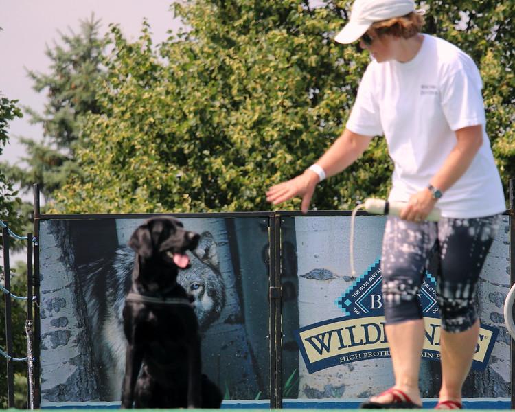 Dock Dogs at Fair-144.JPG