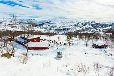 Heilt Vilt på Olalia fjellstove 5-feb-2016
