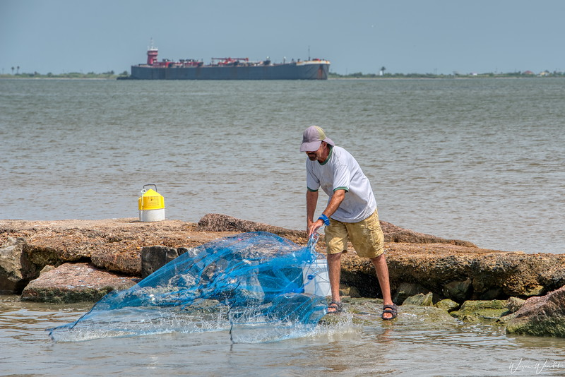 20190620_Galveston_Island_Fisherman_Throwing_Net_750_1864.jpg