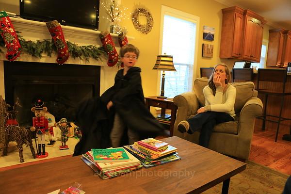 The 2013 Christmas season