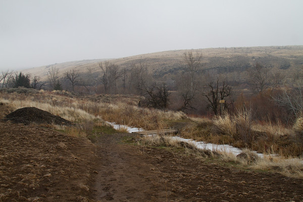 2014-02-01 Snow Mountain Ranch, WOD Trail, Cowiche Canyon Conservancy