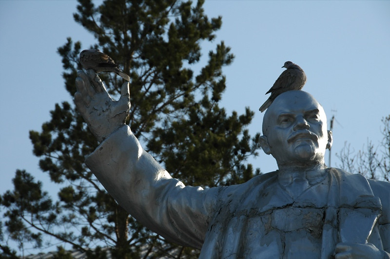 Bird on Lenin's Head - Kochkor, Kyrgyzstan