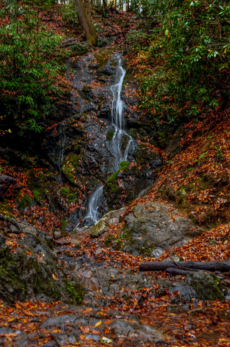 Thin ribbon of waterfall cascades down a mountain littered with colorful fall leaves.