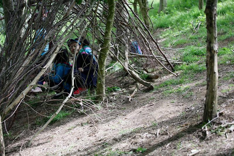 Scouts Brockholes (35 of 107).jpg