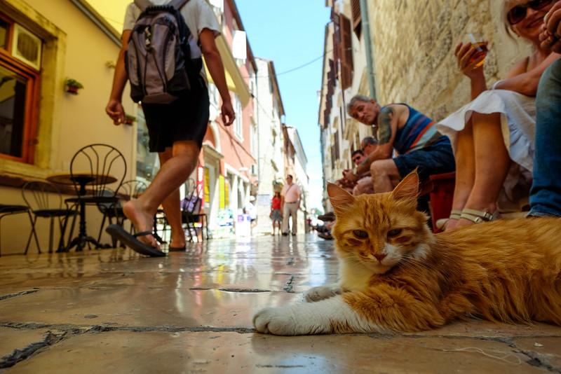 Zadar_Croatia_20150703_0015.jpg