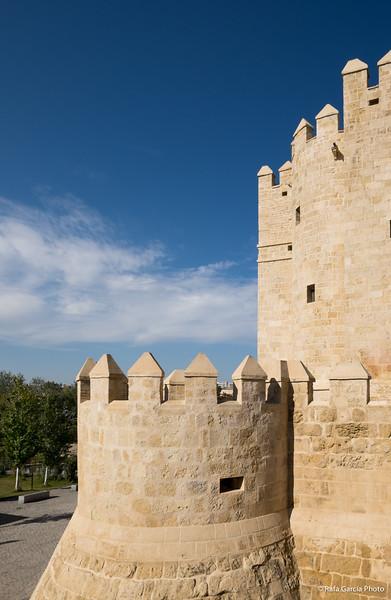 Torre de la Calahorra y entorno