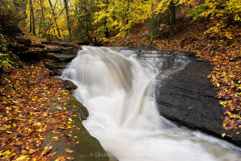 Fall-Run-Park-9292.jpg
