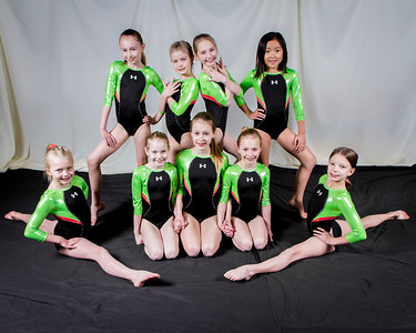 2014 Northwest Gymnastics Team + Individual Photos