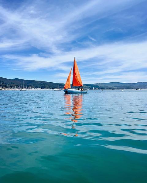 IMG_orangesail-phone.jpg