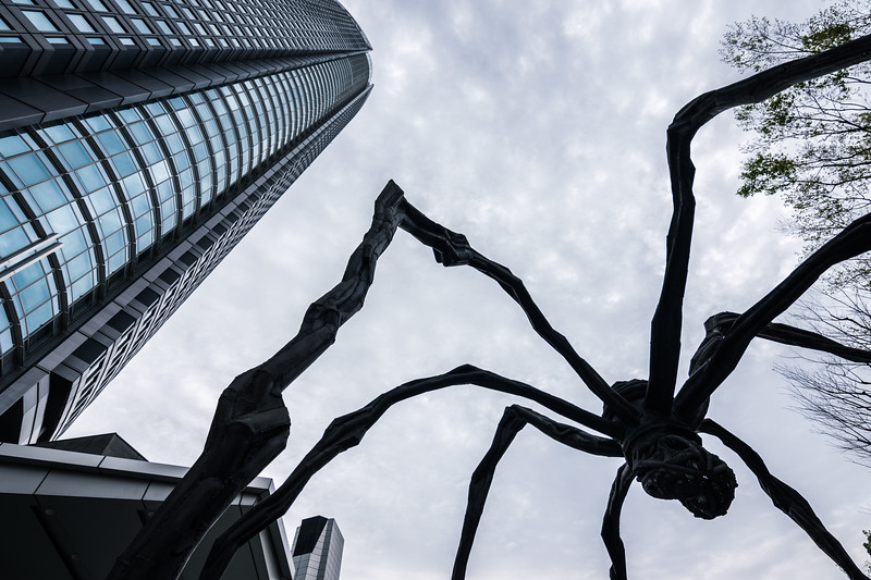 Attack of the Spider || Roppongi